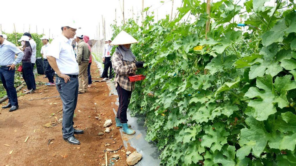 Đắk Nông: Phát huy vai trò của các tổ chức cơ sở hội và  thành viên Hội nông dân trong xây dựng nông thôn mới