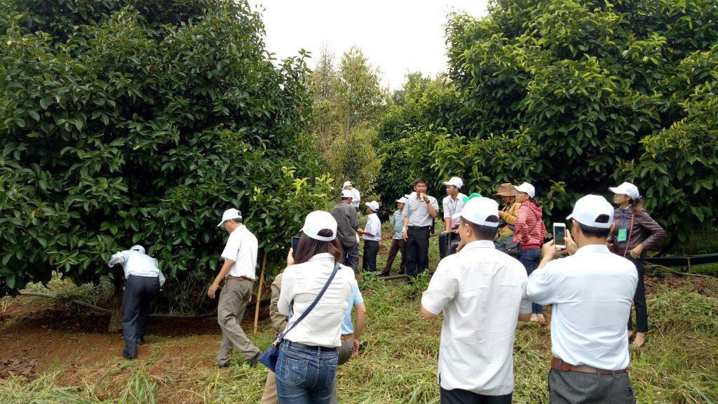 Xây dựng thôn Nghĩa Thuận, xã Đắk Nia trở thành  Khu dân cư Nông thôn mới kiểu mẫu